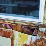 Project Files: Proper Window Flashing